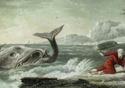 Jonah the Prophet - St Shenouda Monastery Pimonakhos Articles
