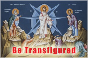 Transfigured life - St Shenouda Monastery Pimonakhos Articles